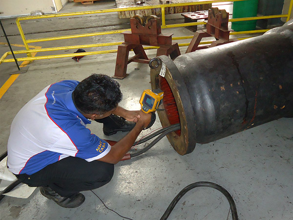 Traction Motor Overhauling